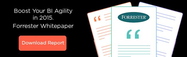 Forrester BI Agility White Paper