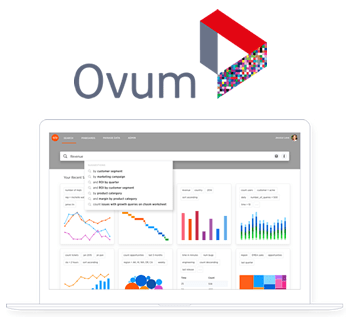 Ovum Webinar - Quantifying the ROI of Search-Driven Analytics